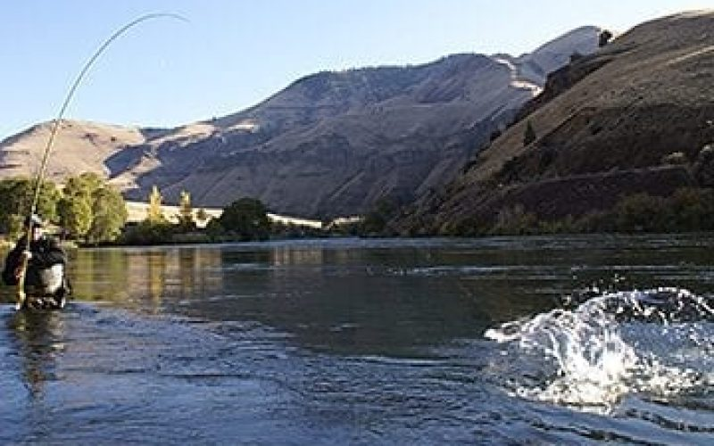 watertimeoutfitters_Guided_Fishing_Main_Multiday_Deschutes